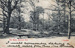 "Postcard: ""The Woods, Wanstead Park""; ARN0222"