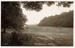 "Postcard: ""Wanstead Park""; ARN0233"