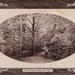 "Postcard: ""The Bridge, Wanstead Park""; ARN0277"