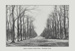 "Book illustration: ""Evelyn Avenue in Bushwood. Wanstead Flats""; ARN0044"