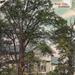 "Postcard: ""Swiss Cottage, Bushwood""; ARN0278"