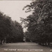 "Postcard: ""The Avenue Bushwood, Leytonstone""; ARN0284"