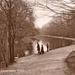 "Postcard: ""The Lake, Wanstead Park""; ARN0441"