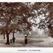 "Postcard: ""Bushwood, Leytonstone""; ARN0014"