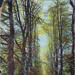 "Postcard: ""The Avenue, Bush Wood""; ARN0283"