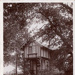 "Postcard: ""Swiss Cottage, Bushwood, Leytonstone""; ARN0144"