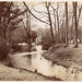 Postcard showing the River Roding at Wanstead Park; ARN0203