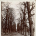 Postcard, unlabelled, of Bushwood Avenue, Leytonstone; ARN0020