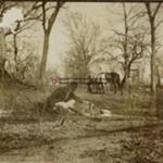 L.M. Wood; 1899-1900; 3.2.7
