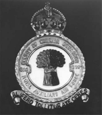 photo negative -  610 (County of Chester) Squadron Crest; 2018.1.555