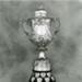 Darlot Cup