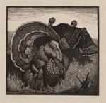 Heysen's Birds (Turkeys); Lionel Lindsay (b.1874, d.1961); Circa 1923; 2016.117