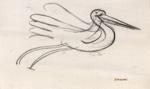 Bird; Charles Blackman (Australian, b.1928, d.2018); Circa 1980; 2012.044