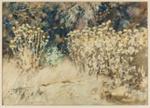 Thistles; Lionel Lindsay (b.1874, d.1961); 1918; 2016.210