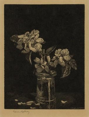 Apple Blossom; Lionel Lindsay (b.1874, d.1961); 1924; 2016.128