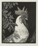 The Emperor (The White Cock); Lionel Lindsay (b.1874, d.1961); 1922; 2016.112