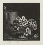 Untitled (Flower & Tankard); Lionel Lindsay (b.1874, d.1961); Not Dated; 2016.201