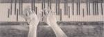 Dance in Delirium; Shane Jones (Australian, b.1955); 2014; 2015.123