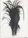 Face amongst reeds; Charles Blackman (Australian, b.1928, d.2018); Circa 1976; 2012.042