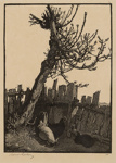 The Broken Fence; Lionel Lindsay (b.1874, d.1961); 1923; 2016.120