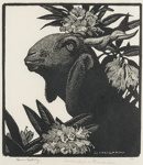 Syrian Goat & Rhododendrons; Lionel Lindsay (b.1874, d.1961); 1933; 2016.177