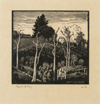 Orchard Kurrajong; Lionel Lindsay (b.1874, d.1961); 1925; 2016.156