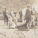 Planting potatoes / horses; ULMPH 2000 0072