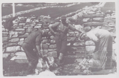 3 men shearing sheep at Morefield; ULMPH 2000 0576