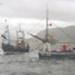 Fish boat race; ULMPH 2000 0009