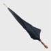 Accessories, gentleman's umbrella; unknown maker; ?; RX.1998.24.1