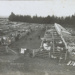 Photograph, Thornbury Saleyards ; McKersch; 1910