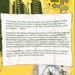 Back cover of 'The Exciting Life of Being a Woman...' with information about Feminist Webs