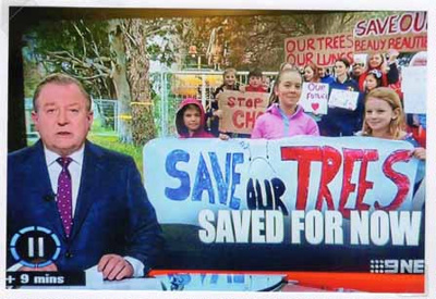 Save 229 Trees demonstration at the site of Sandringham College, Beaumaris Campus; Channel 9; 2016 Oct. 24; P12127