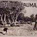 Beautiful Beaumaris; 1924; P1486