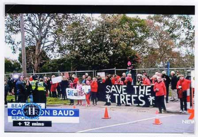 Save 229 Trees demonstration at the site of Sandringham College, Beaumaris Campus; Channel 7; 2016 Oct. 24; P12121
