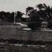 The Crescent gardens; c. 1934; P1831