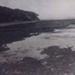 Table Rock, Beaumaris Beach, from below Dalgetty Road; c. 1920; P0494