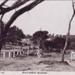 Beach reserve, Beaumaris.; c. 1925; P1518