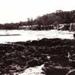 Looking towards Ricketts Point Beaumaris; 192-?; P4701