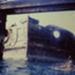 Bow of HMVS Cerberus, Half Moon Bay.; Charlesworth, Peter; 1989; P4013