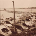 Sandringham Yacht Club; 1949; P0246